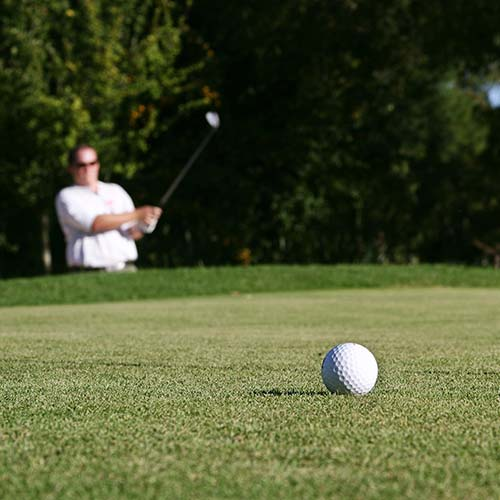 Enjoy golf at nearby courses
